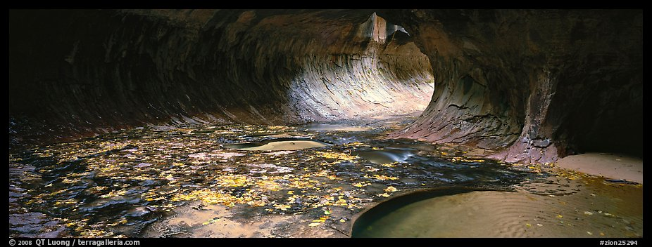 Tunnel-like opening and autumn leaves. Zion National Park (color)