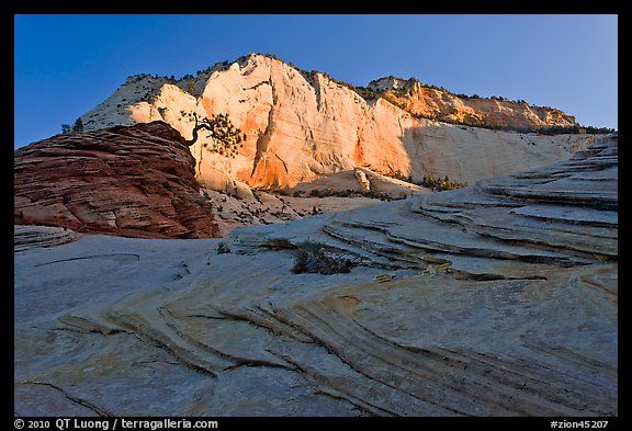 Swirls and cliffs at sunrise, Zion Plateau. Zion National Park (color)