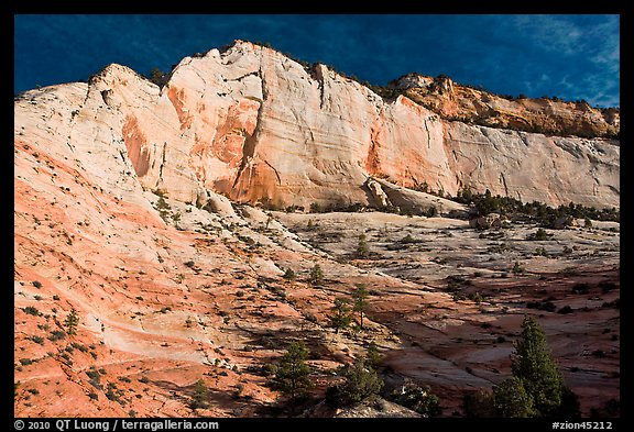 White and pink cliff, Zion Plateau. Zion National Park (color)