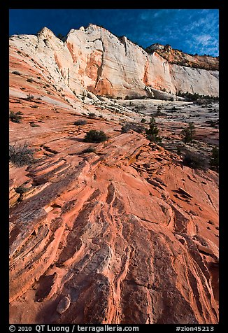 Sandstone swirls and cliff, Zion Plateau. Zion National Park (color)