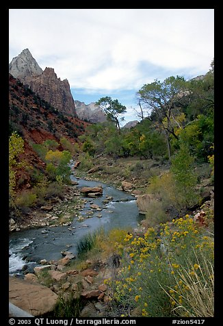 Virgin River in Zion Canyon, afternoon. Zion National Park, Utah, USA.