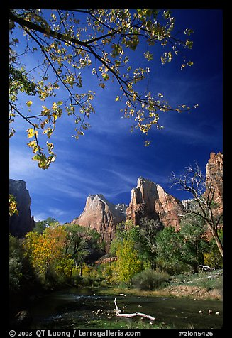 Court of the Patriarchs and Virgin River, mid-day. Zion National Park (color)