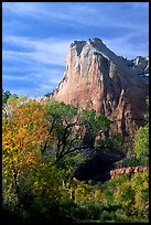Trees in autumn foliage and Court of the Patriarchs, mid-day. Zion National Park, Utah, USA.