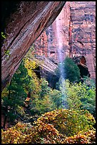 Cliff and waterfall, near  first Emerald Pool. Zion National Park, Utah, USA.