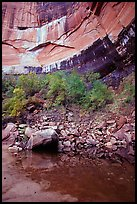 Multi-colored rock walls above the Third Emerald Pool. Zion National Park, Utah, USA. (color)