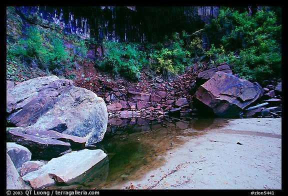 Sandstone boulders in Third Emerald Pool. Zion National Park (color)