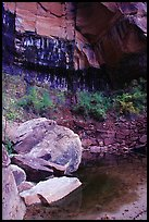 Boulders in  Third Emerald Pool. Zion National Park, Utah, USA. (color)