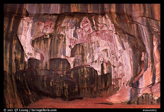 Striated rock wall, Double Arch Alcove, Middle Fork of Taylor Creek. Zion National Park (color)