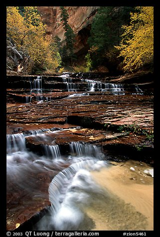 Archangel Falls in autumn, Left Fork of the North Creek. Zion National Park (color)