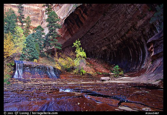 Cascade and alcove, Left Fork of the North Creek. Zion National Park (color)