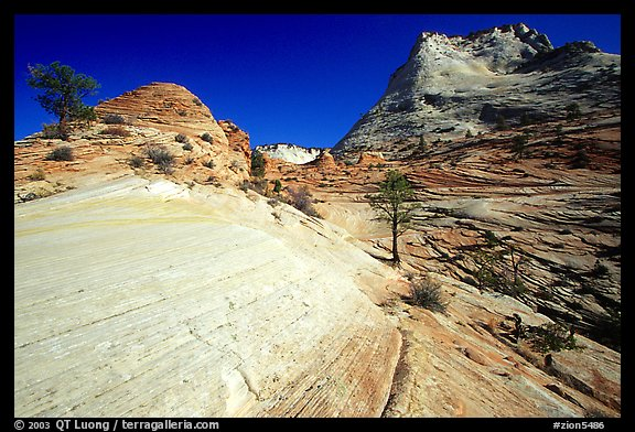 Sandstone circular striations, Zion Plateau. Zion National Park (color)