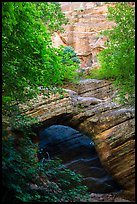Arch and wall, Hidden Canyon. Zion National Park ( color)