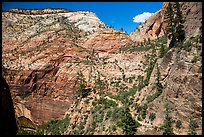 Distant hikers on Hidden Canyon trail. Zion National Park ( color)