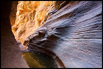 Water-sculpted canyon and pool, Mystery Canyon. Zion National Park ( color)
