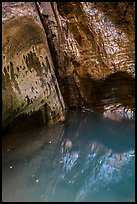 Mystery Springs pool, Mystery Canyon. Zion National Park ( color)
