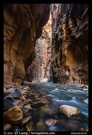 Virgin River flowing between soaring walls, the Narrows. Zion National Park (color)