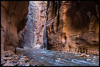 Virgin River between steep and tall walls of the Narrows. Zion National Park ( color)