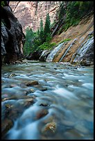 The Virgin River below Mystery Falls, the Narrows. Zion National Park ( color)