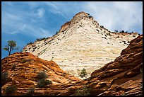 White cliffs towering over red cliffs, East Zion. Zion National Park ( color)