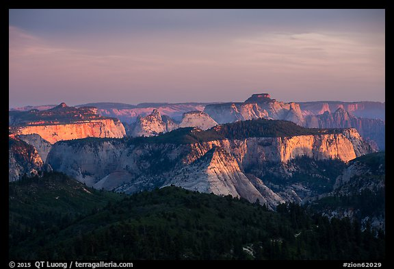 Forested plateaus and canyons at sunset from Lava Point. Zion National Park (color)