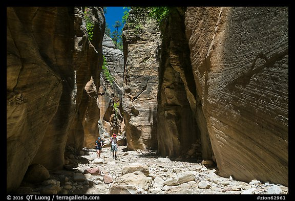 Hikers in Orderville Canyon. Zion National Park (color)