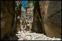 Hikers in Orderville Canyon. Zion National Park ( color)