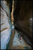 Hikers walk between tall walls, Orderville Canyon. Zion National Park ( color)