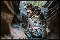 Boulder called Guillotine wedged in Orderville Canyon. Zion National Park ( color)