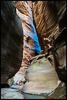 Slot canyon section of Orderville Canyon. Zion National Park ( color)