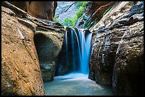 Waterfall, Orderville Canyon. Zion National Park ( color)