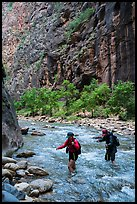 Hikers in the Narrows in late afternoon. Zion National Park ( color)