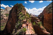 Hikers on narrow spine of Angels Landing. Zion National Park ( color)