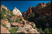 White Deertrap Mountain stands out amongst red sandstone. Zion National Park ( color)