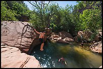 Man jumping into water, Pine Creek. Zion National Park ( color)