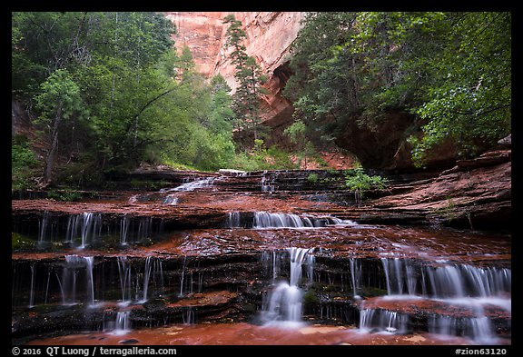 Archangel Falls in the spring. Zion National Park (color)
