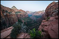 Canyon Overlook, dawn. Zion National Park ( color)