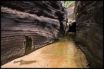 Narrow passageway, Upper Left Fork. Zion National Park ( color)