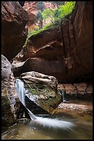 Double waterfall, Upper Subway. Zion National Park ( color)