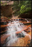 Cascades gushing over colorful terraces. Zion National Park ( color)