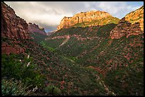 South Guardian Angel towering above Lower Left Fork. Zion National Park ( color)