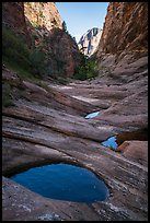 Water-filled potholes, Behunin Canyon. Zion National Park ( color)