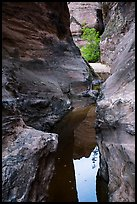 Reflections in narrows, Behunin Canyon. Zion National Park ( color)