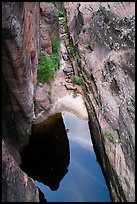Pool from above, Behunin Canyon. Zion National Park ( color)