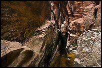 Room with pothole,  Behunin Canyon. Zion National Park ( color)