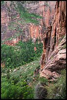 Cliff above Emerald Pools. Zion National Park ( color)