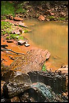 Water from Middle Emerald Pool drips into Lower Emerald Pool. Zion National Park ( color)