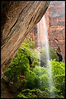 Waterfall on alcove above Lower Emerald Pool. Zion National Park ( color)