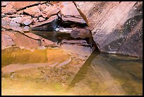 Rock reflections, Upper Emerald Pool. Zion National Park ( color)