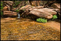 Stream flows over travertine, Middle Emerald Pool. Zion National Park ( color)