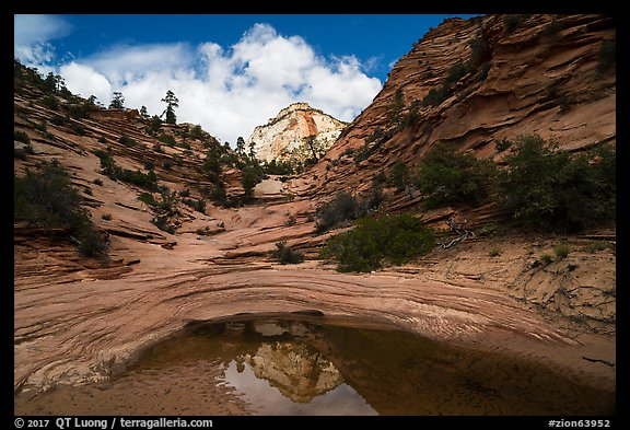 Peak reflected in pothole, Zion Plateau. Zion National Park (color)